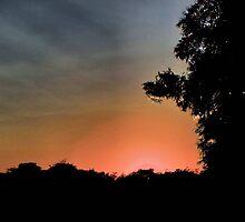 Sunset at Pecan Grove Park by aprilann