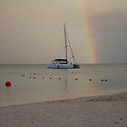 Over the Rainbow She Floats  by John  Kapusta