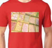 dried food in chinatown Unisex T-Shirt