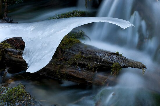 Ice Remnant by Bob Christopher