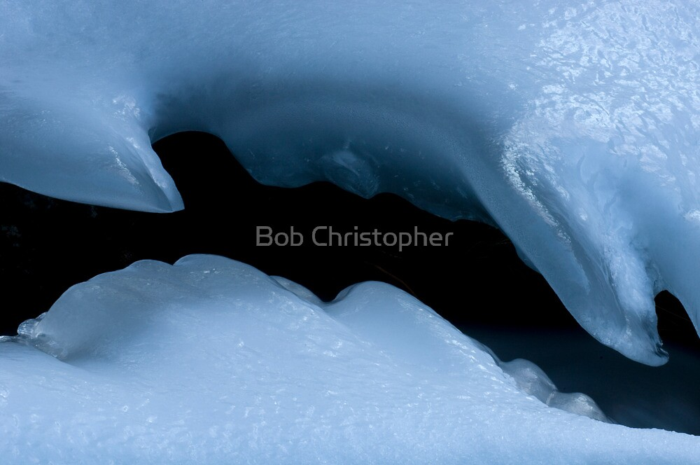 Natures Ice Sculpture by Bob Christopher