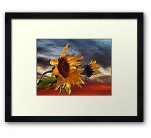 hot summer wind Framed Print