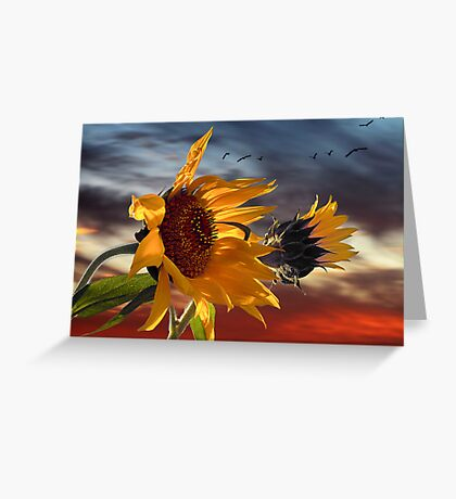 hot summer wind Greeting Card