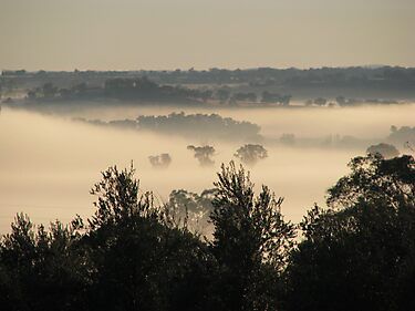 A Misty Bannockburn Valley by Saraswati-she