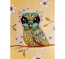 the peridot owl Photographic Print