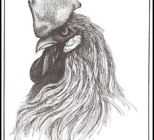 Rooster by Kat Anderson