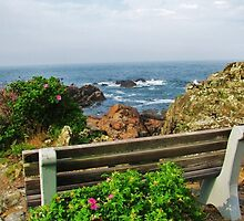 The Marginal Way by ansel51