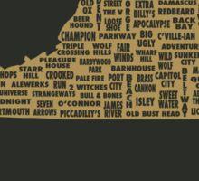 Drink Local - Virginia Beer Shirt Sticker