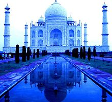 Taj in Tungsten by KerryPurnell