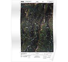 USGS Topo Map Washington State WA Salmo Mountain 20110428 TM Poster