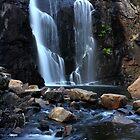 MacKenzie Falls by Sarah Fridd