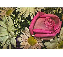 Mixed Flowers  Photographic Print