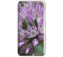 Chive flowering  iPhone Case/Skin