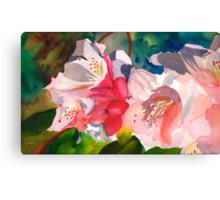 Rhoddies in Bloom Canvas Print
