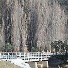 The Naas Bridge by peterhau