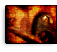Fency Red Canvas Print