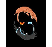 Mega Charizard Y and X Photographic Print
