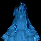 Our Blue Lady Of The Valley by Jane Neill-Hancock