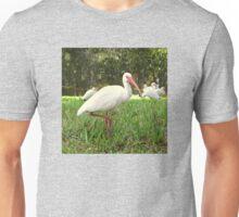 American White Ibis Birds in Orlando, Florida Unisex T-Shirt