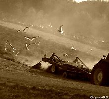 Plowing of the fields by riverendez