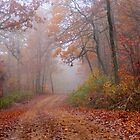 Road Less Traveled by NatureGreeting Cards ©ccwri