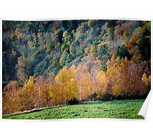 Autumn, Scott's View, Scottish Borders Poster