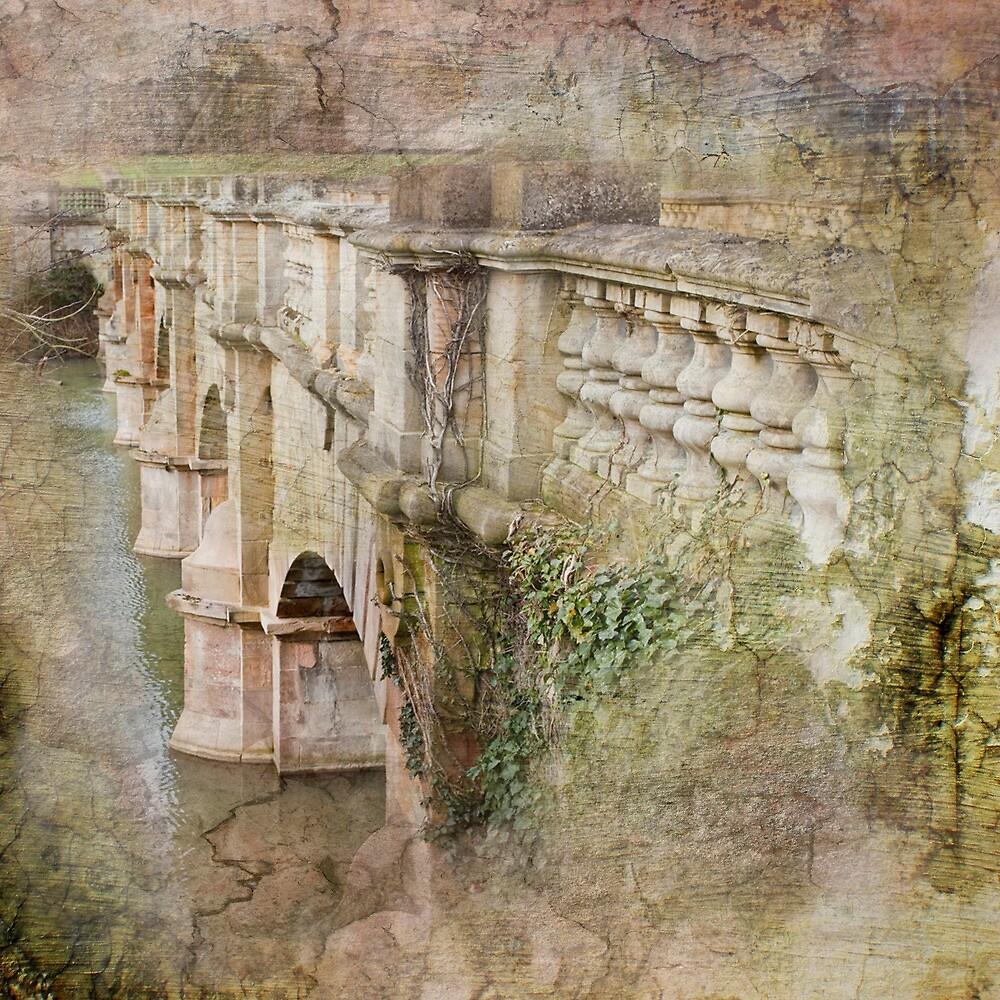 A Bridge too far by Martin Crush