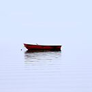 Red Boat by peter Jensen
