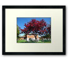 Bursting Blooms Framed Print