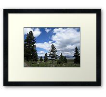 A Tree In The Middle Framed Print