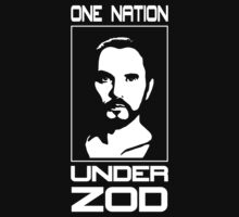 One Nation Under Zod by BakedBunny