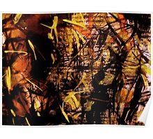 sunlight.... bamboo forest  Poster