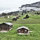 Flims Switzerland. by Lilian Marshall