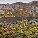 Crater Lake - Cradle Mountain National Park by TonyCrehan