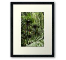 Gondwanaland Dorrigo Framed Print