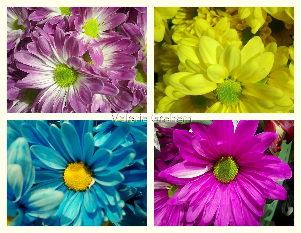 Floral collage by Valeria Lee