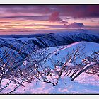 Whisper of a Setting Sun, Mount Feathertop VIC by Chris Munn