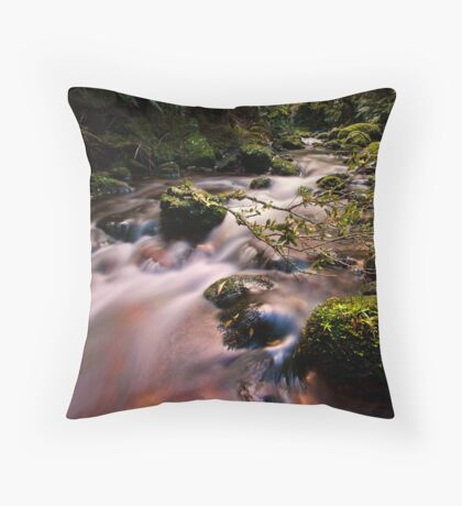 Old kaimai Stream drift Throw Pillow