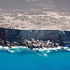 Bunda Cliffs Nullarbor by Paul Birch