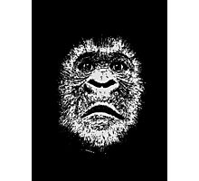 Black and White Face Of A Gorilla Photographic Print