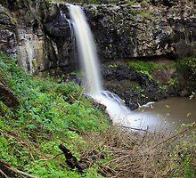 Moorabool Falls by Simon Penrose
