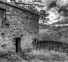 Barn with a view by Colin Payne