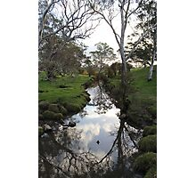 Williams Road, Mount Barker Springs, South Austra Photographic Print