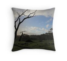 Summit Fire Track, Mount Barker Springs, South Australia Throw Pillow