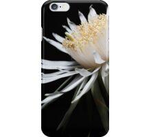Star Born iPhone Case/Skin