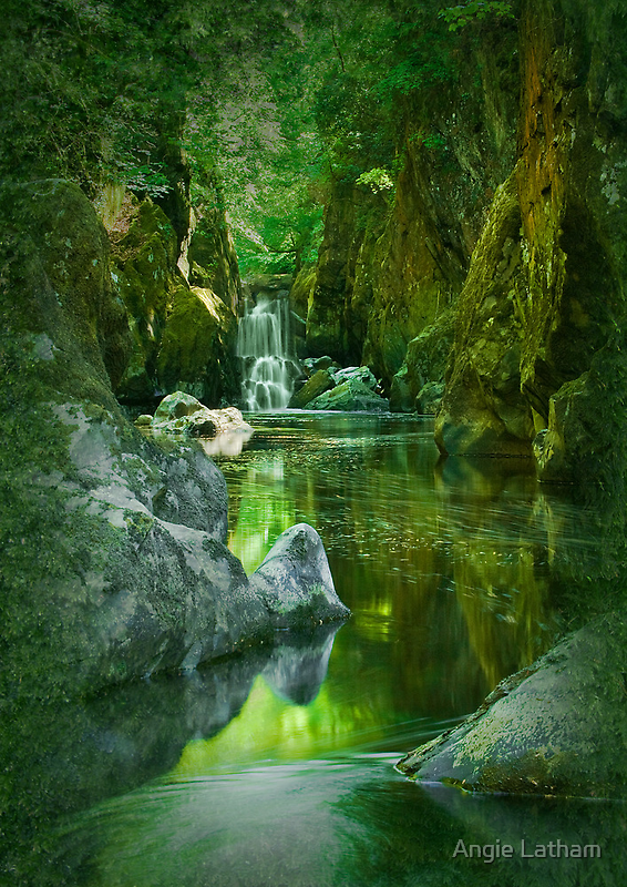 The Fairy Glen , Betws-y-Coed by Angie Latham