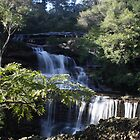 Wentworth Falls  by Robert Bolton
