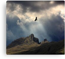 And I Soar. Canvas Print