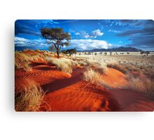 Dancing Grasses on the Red, Red Earth Metal Print