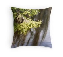 Cypress Times Throw Pillow